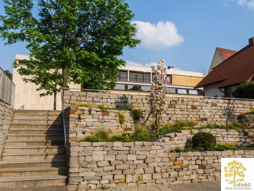 Projekt-1-Nibelungenhalle-2