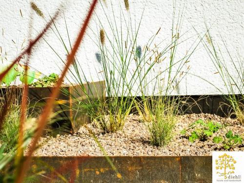 Projekt-10: Gartenbau