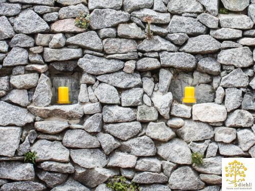 Projekt-2-Natursteinmauer-6