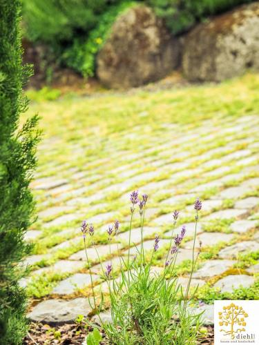 Projekt-22: Gartenbau
